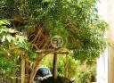 Excepcional casa en La Barra. Punta For Sale 1281321