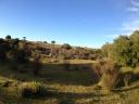 Campo en Garzón. Punta For Sale 189914