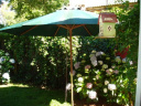 Casa en La Barra. Punta For Sale 337904