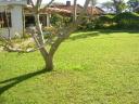 Casa en Pinares. Punta For Sale 565496