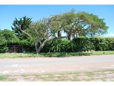 Casa en Pinares. Punta For Sale 565781