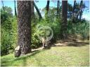 Casa en Pinares. Punta For Sale 1280383