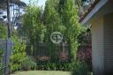 Casa en Punta Del Este Cantegril. Punta For Sale 1280093
