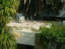 Casa en Punta Del Este Península. Punta For Sale 191225