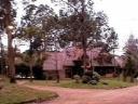 Casa en Punta Del Este Rincón Del Indio. Punta For Sale 565835