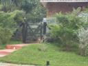 Casa en Punta Del Este San Rafael. Punta For Sale 565614