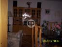 Departamento en Punta Del Este Aidy Grill. Punta For Sale 1302220