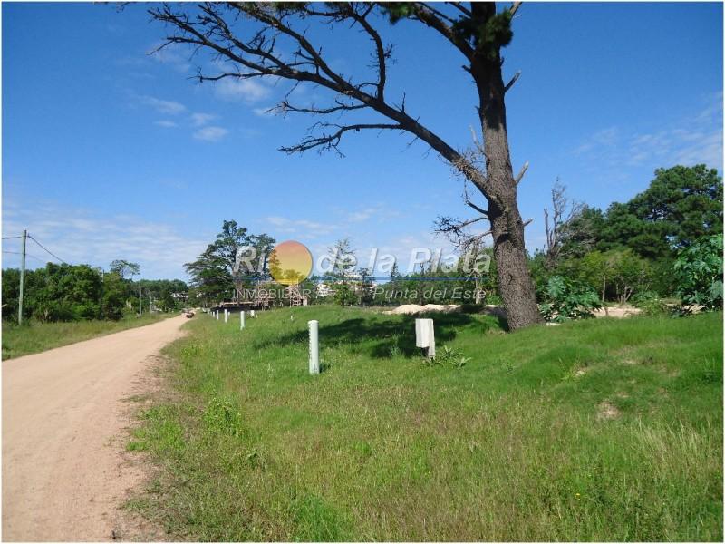 Terreno en Pinares. Punta For Sale 1344724