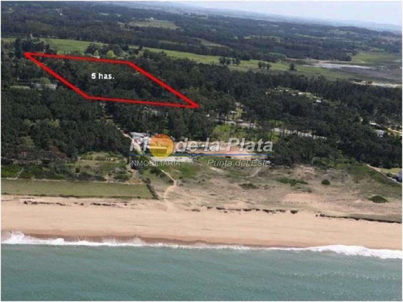 Terreno en Pinares. Punta For Sale 1344760