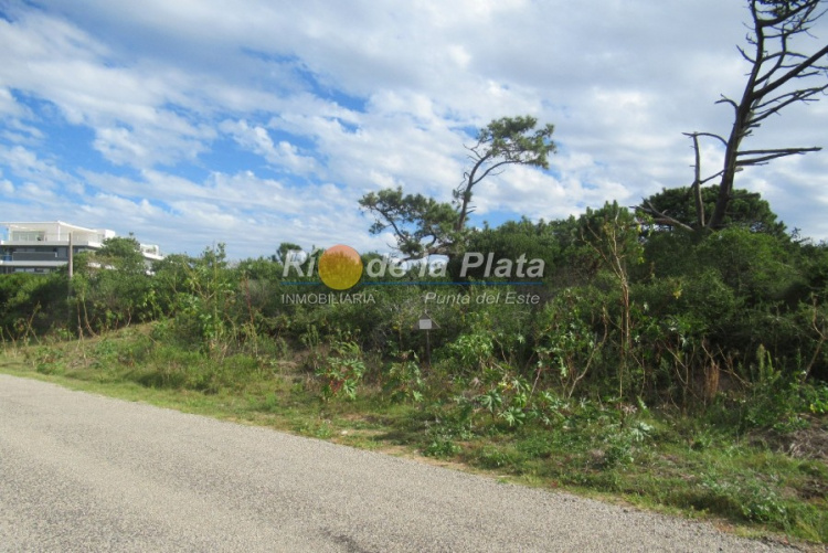 Terreno en Punta Del Este Rincón Del Indio. Punta For Sale 1344755