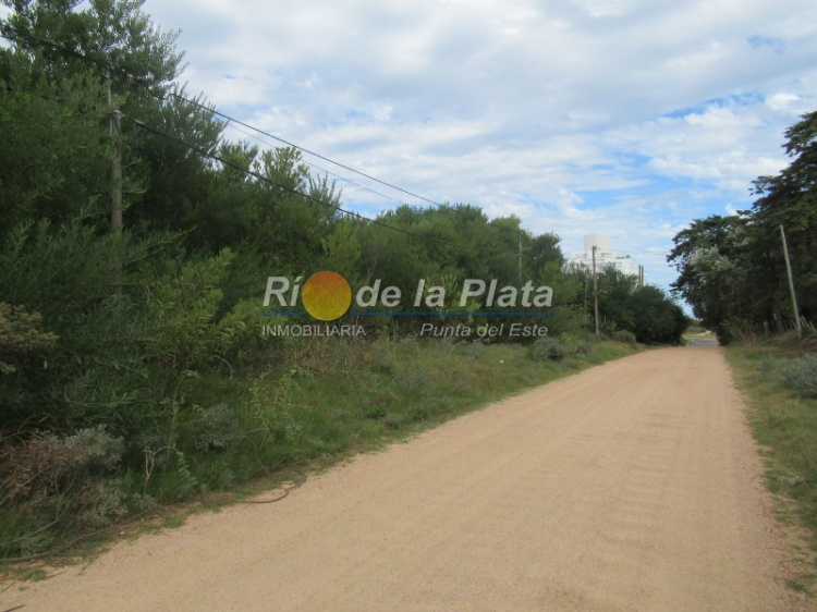 Terreno en Punta Del Este Rincón Del Indio. Punta For Sale 1344772