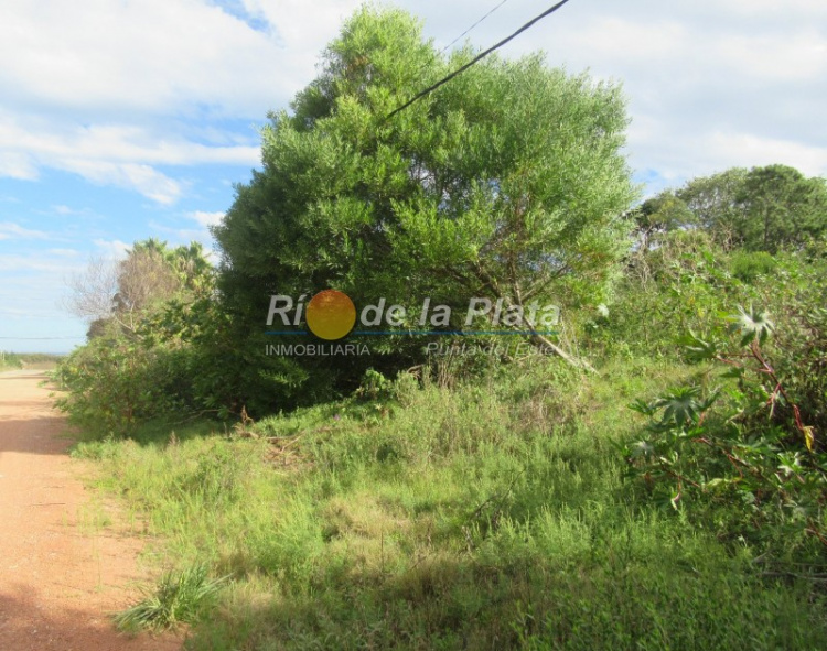 Terreno en Punta Del Este Rincón Del Indio. Punta For Sale 1344729