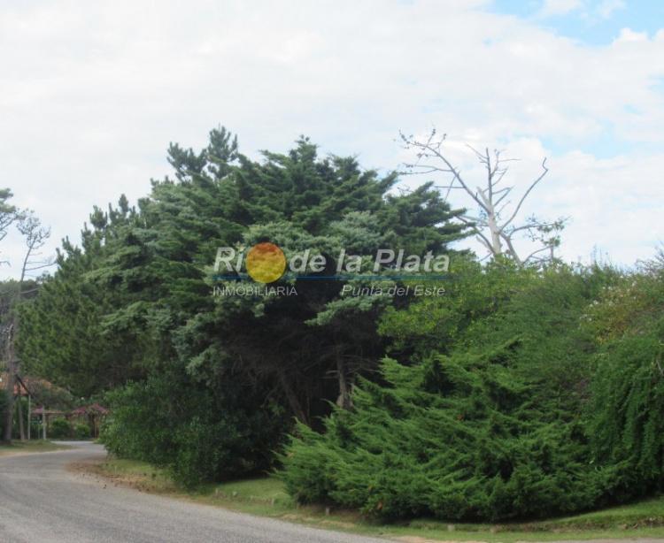 Terreno en Punta Del Este Rincón Del Indio. Punta For Sale 1344744