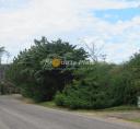 Terreno en Punta Del Este Rincón Del Indio. Punta For Sale 1344749